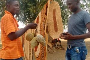 Science Agenda for Agriculture in Africa: A New Opportunity for Young Agripreneurs
