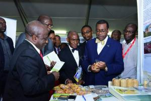 Africa needs to reduce its reliance on food imports