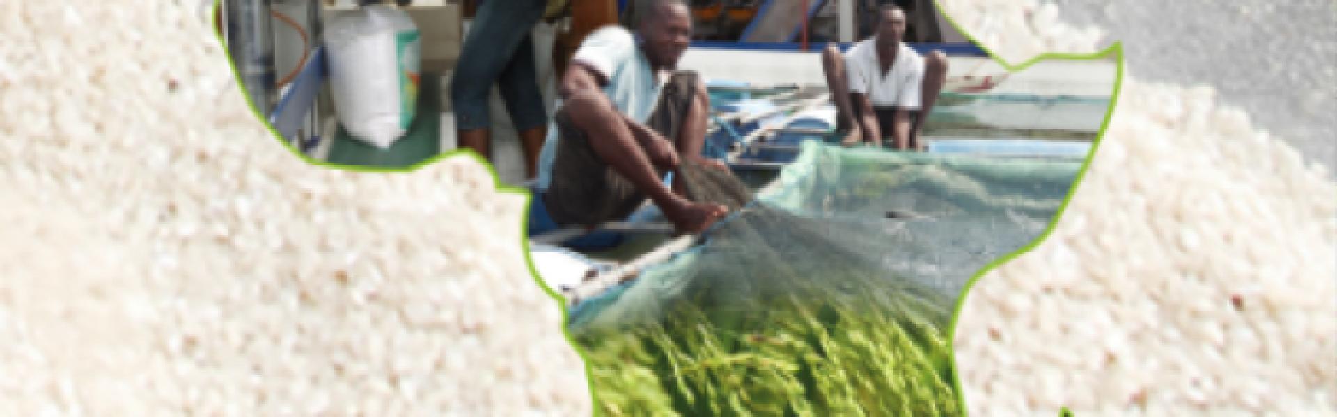 Comment les acteurs du financement mixte peuvent-ils collaborer pour financer les agriculteurs uniquement actifs sur les marchés locaux?